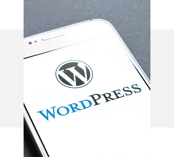 BIZON.expert izdelava spletnih strani WordPress