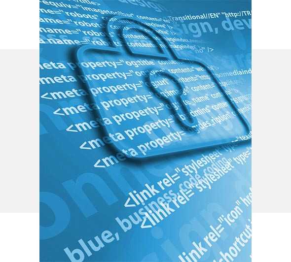 BIZON.expert izdelava spletnih trgovin varnost in struktura