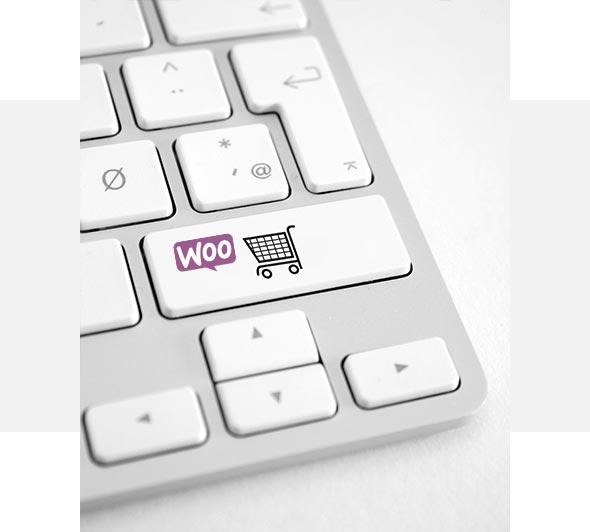 BIZON.expert izdelava spletnih trgovin WooCommerce