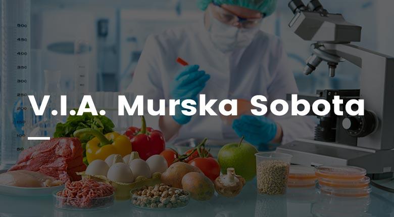 BIZON.expert V.I.A. Murska Sobota