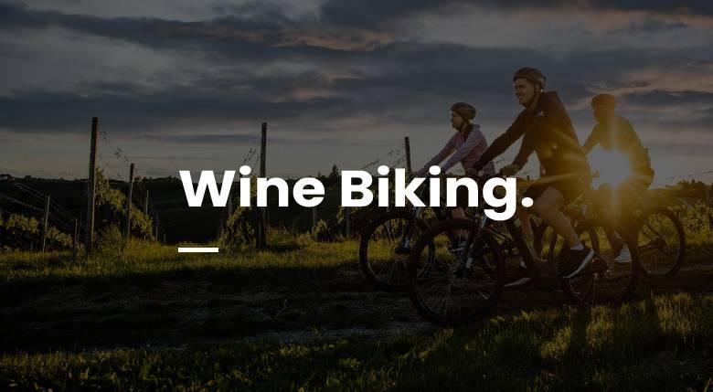Wine Biking